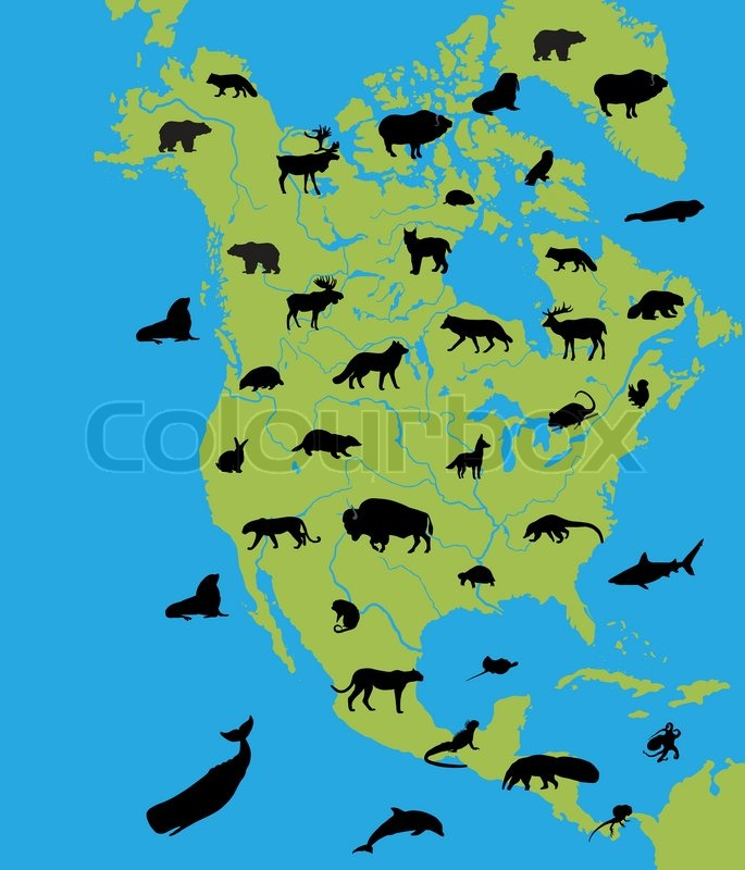 Animals on the map of North America and their habitats | Vector ...