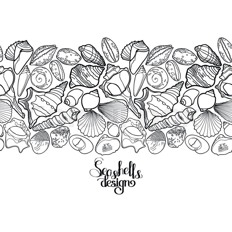 Collection Of Seashells Drawn In Line Art Style On White Background Ocean Endless Vector Border Coloring Page Design