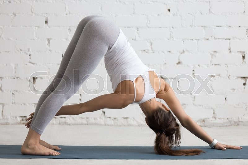 Beautiful young woman working out indoors, doing yoga exercise in the room with white walls, Revolved Downward-Facing Dog Pose, Parivrtta Adho Mukha Svanasana, full length, back view, stock photo