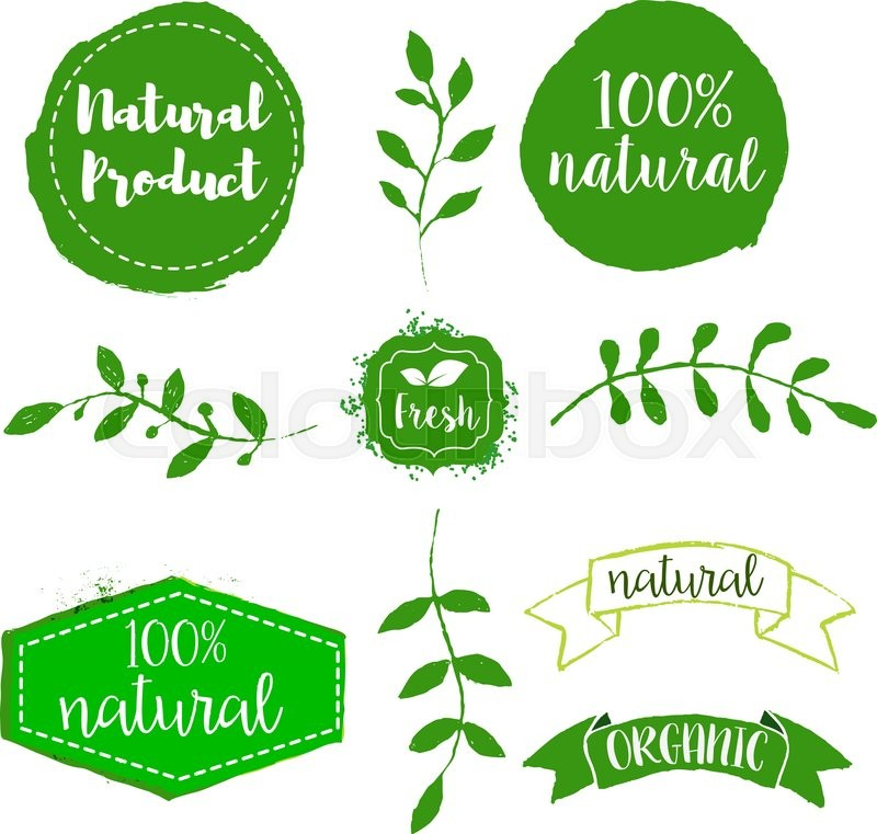 Set Of Natural Product Labels . Hand Drawn Design Elements