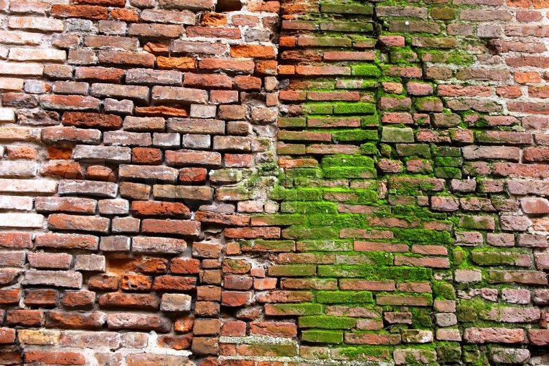 Red Brick Property Management