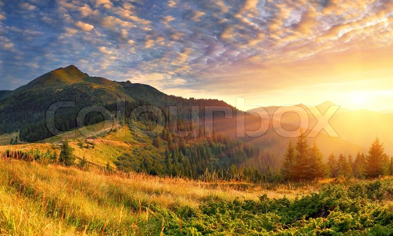 Summer landscape in the mountains. Sunrise, stock photo