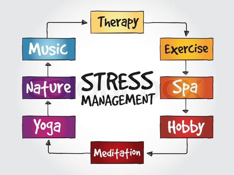 Stress Management Mind Map Business Concept Stock Vector Colourbox