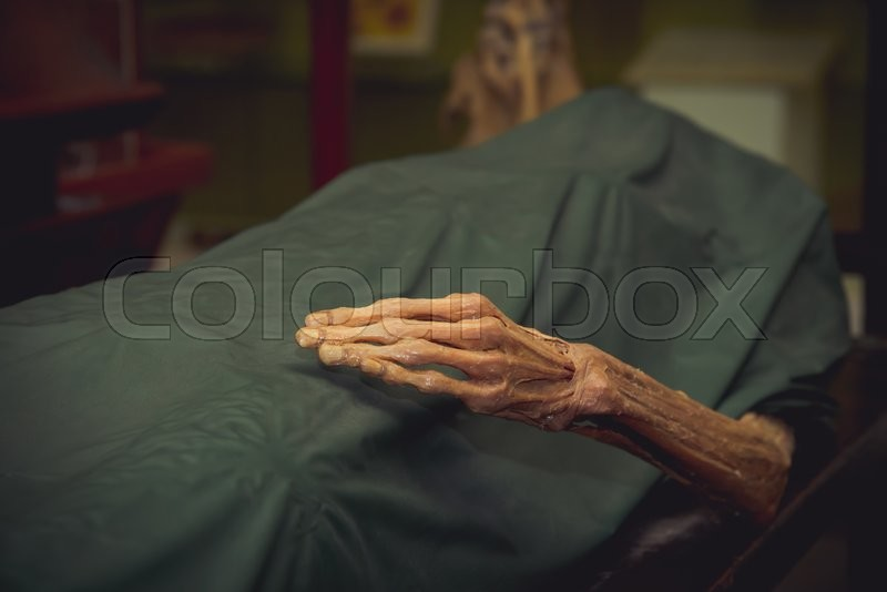 The dead body, Focus on hand decay, stock photo