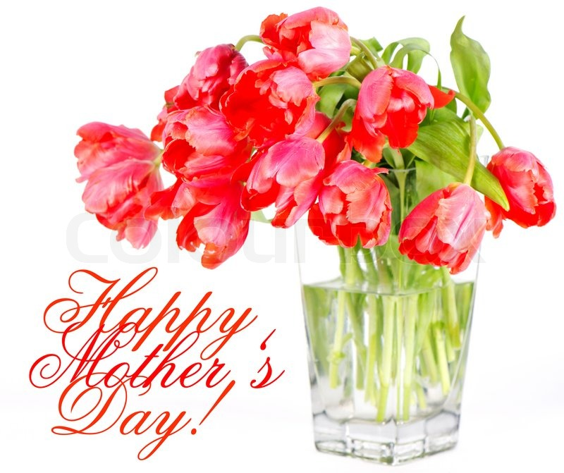 Happy Mothers Day Red Tulip Flowers In A Glass Vase Stock Photo