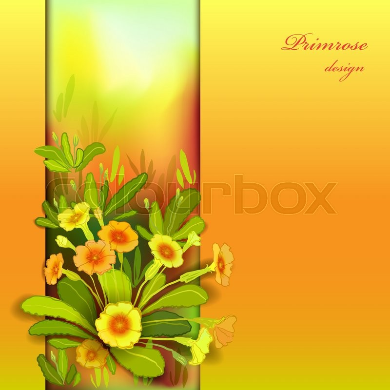 Yellow Orange Floral Background Vertical Border Frame With Primroses And Green Leaves Forest Or Meadow Sketch Sunny Amber Watercolor