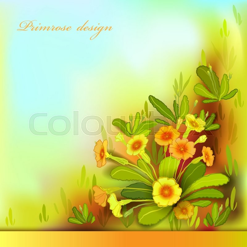 Yellow Orange Floral Background Horizontal Border Frame With Primroses And Green Leaves Forest Or Meadow Sketch Sunny Amber Watercolor