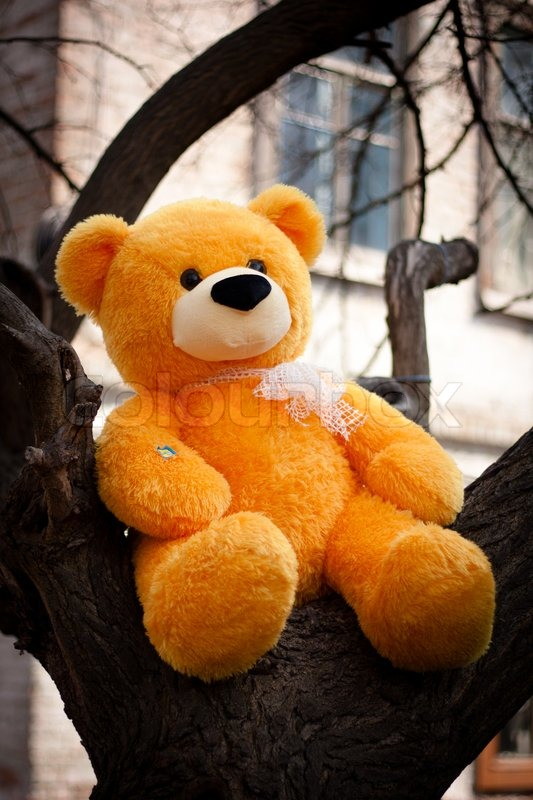 Yellow Teddy Bear With A White Bow Sits Stock Photo Colourbox