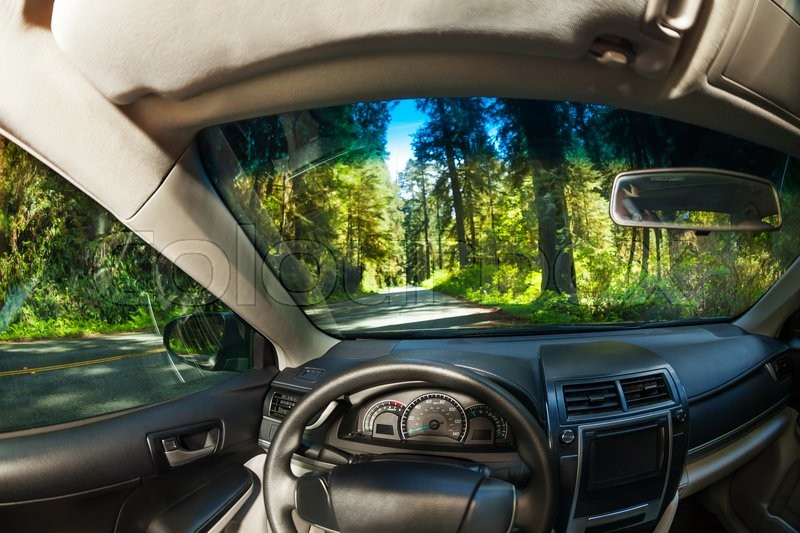 View inside the car with beautiful forest view of Redwood during summer in California, stock photo