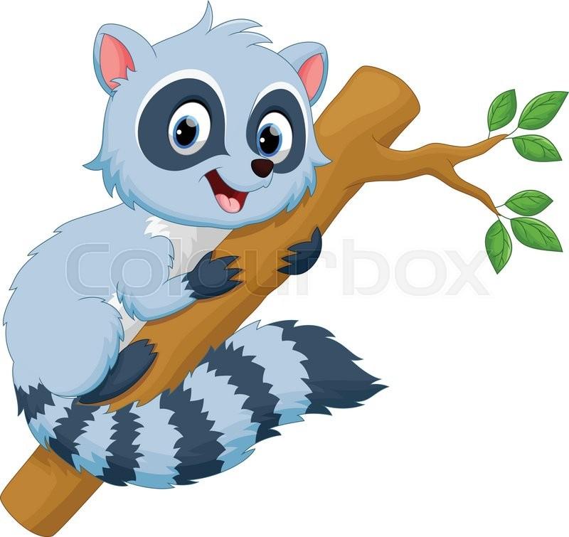 Vector illustration of cute raccoon cartoon isolated on white
