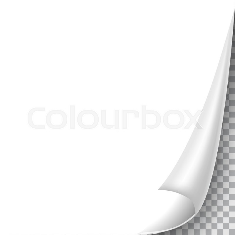 blank sheet of paper with page curl and shadow design element for