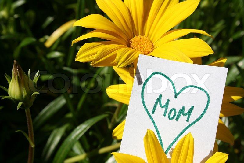 Blumen mit Herz mit dem Wort Mama in ihr auf einem weißen Papier zu ...