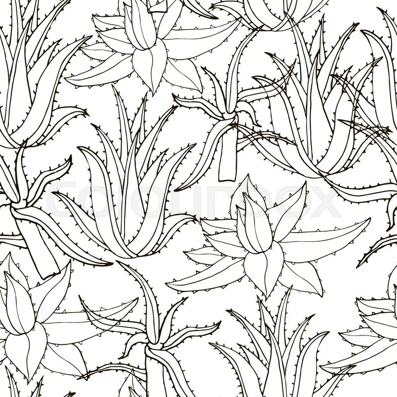 Creative Hand Drawn Texture Aloe Leaves On White Line Drawing Background Monochrome Floral Pattern Vector Stock Of Seamless