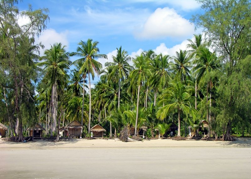 Christmas Tree Manufacturer Thailand : Tropical beach with bungalows and palm trees chang island