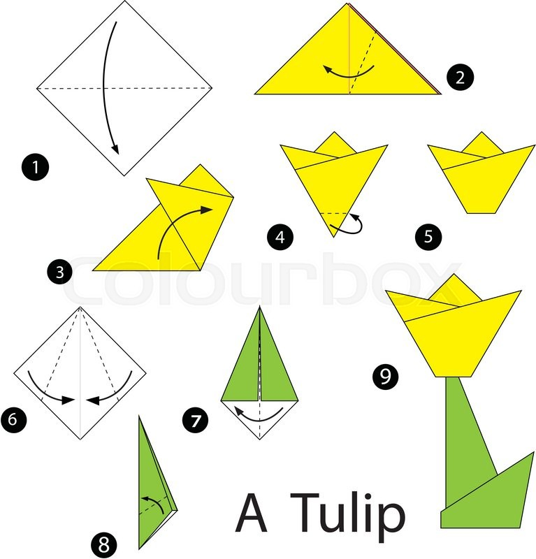 Toy paper origami vector steps cartoon flower tulip stock toy paper origami vector steps cartoon flower tulip stock vector colourbox mightylinksfo