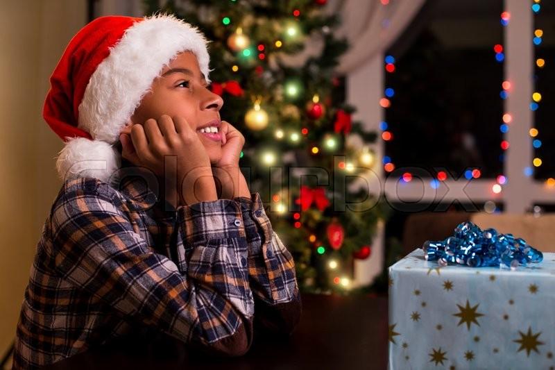 Christmas Spruce Tree