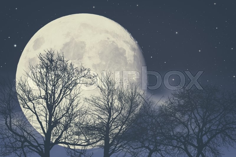 Under Moon light, abstract fantasy backgrounds, stock photo
