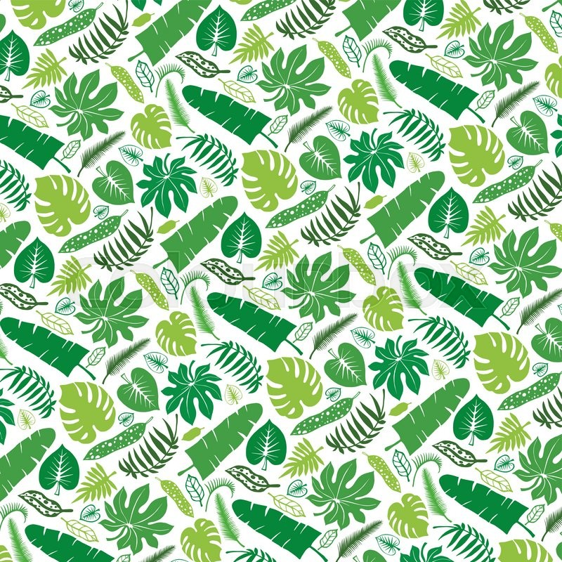 Tropical Palm Leaves PatternVector Green Leaf Silhouette Background Best Tropical Leaves Pattern