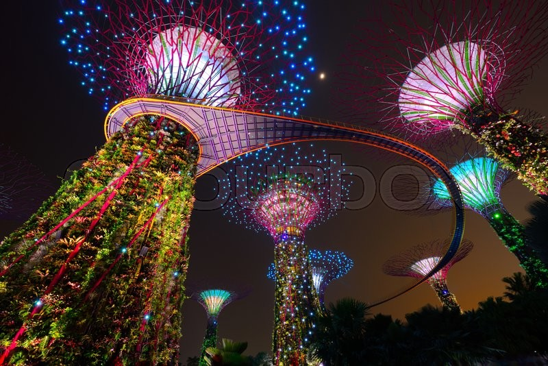 Supertree garden at night, garden by the bay in Singapore, stock photo