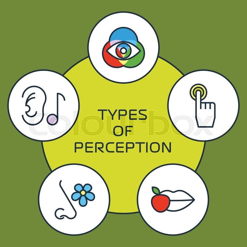 Five senses with human organs, five senses icons. Vector senses icon ...