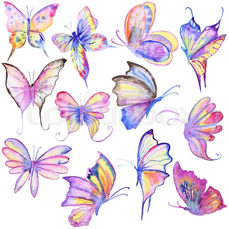 Watercolor hand drawn butterflies collection. Hand painted ...
