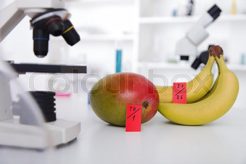 Chemical Laboratory of the Food supply . Food in laboratory, dna modify .Toning image, stock photo