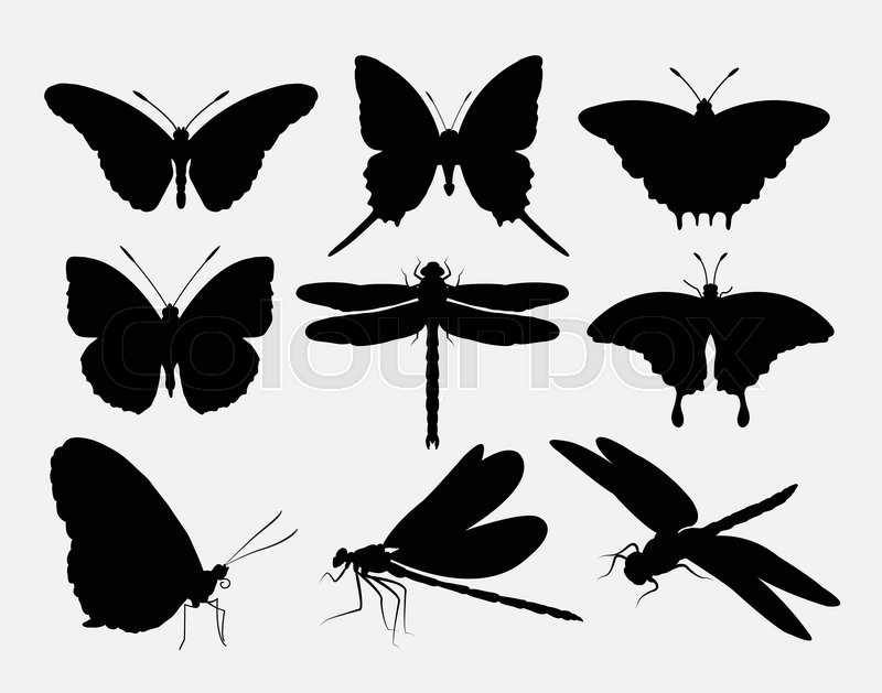 Butterfly And Dragonfly Insect Silhouettes Good Use For Symbol