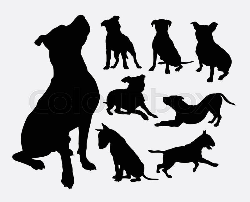 Flying Paws Dog Training