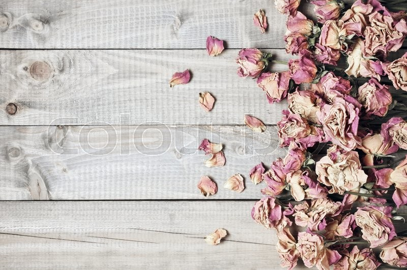 Pile Of Pink Dried Roses On Gray Rustic Wooden Background As Border Top View Point