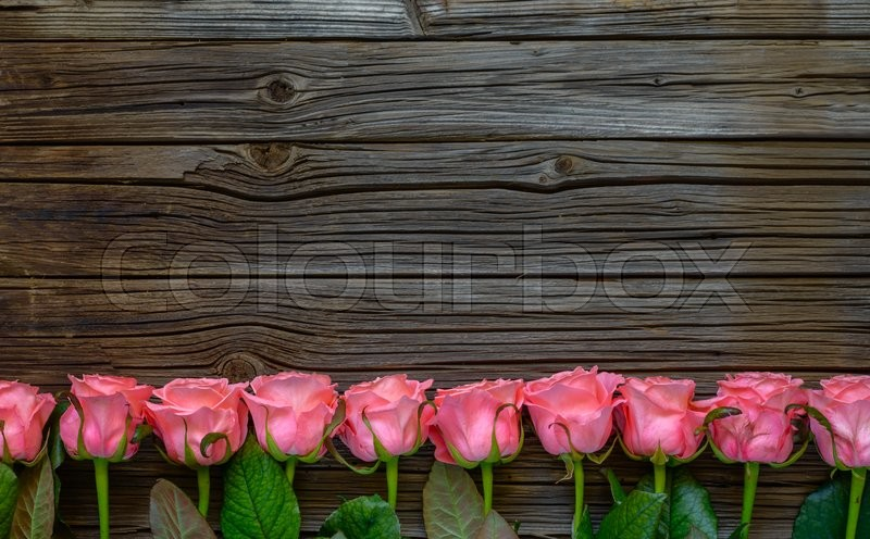 Side Border Of Beautiful Fresh Pink Roses Symbolic Love And Romance On A Rustic Wood Background For Valentines Day Mothers Anniversary Or Wedding