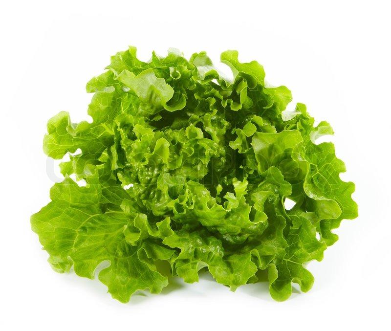 Salat Stock Bild Colourbox