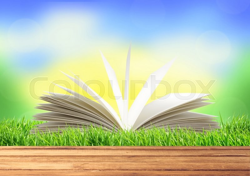 White book in green grass over bright nature background, stock photo