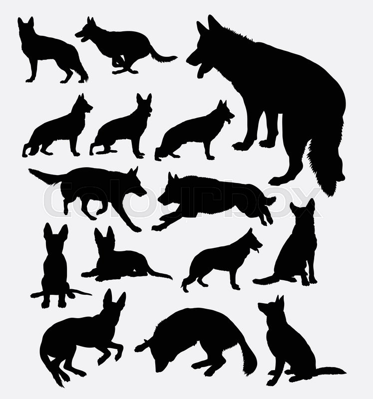 german shepherd pet dog silhouette good use for symbol web icon logo mascot sticker sign or any design you want easy to use stock vector rh colourbox com German Shepherd Silhouette German Shepherd Drawings