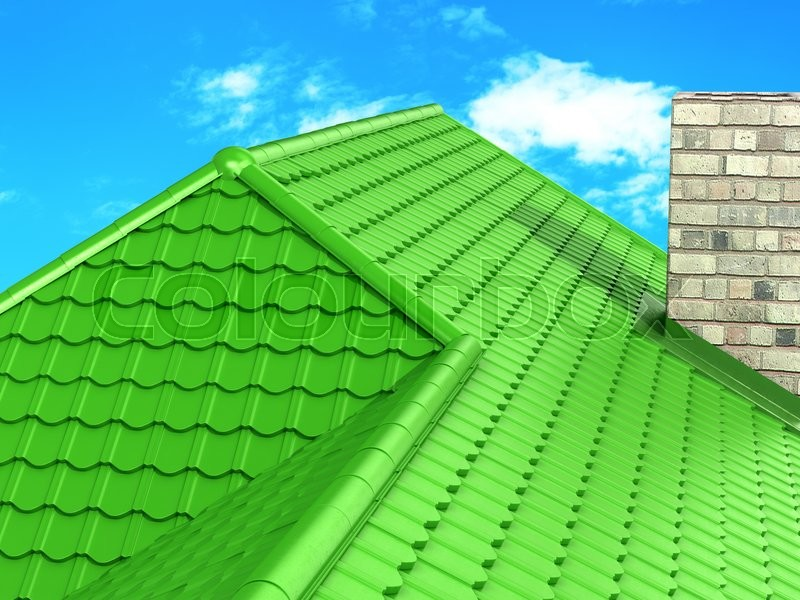 New green roof against the blue sky, stock photo
