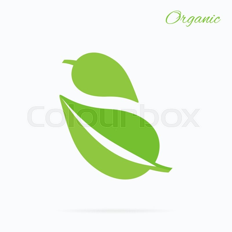 organic logo green leaf design flat nature leaf logo