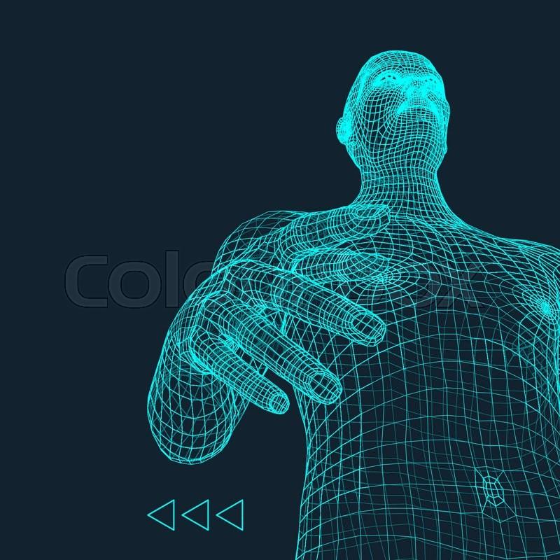 Man 3d Model Of Man Human Body Stock Vector Colourbox