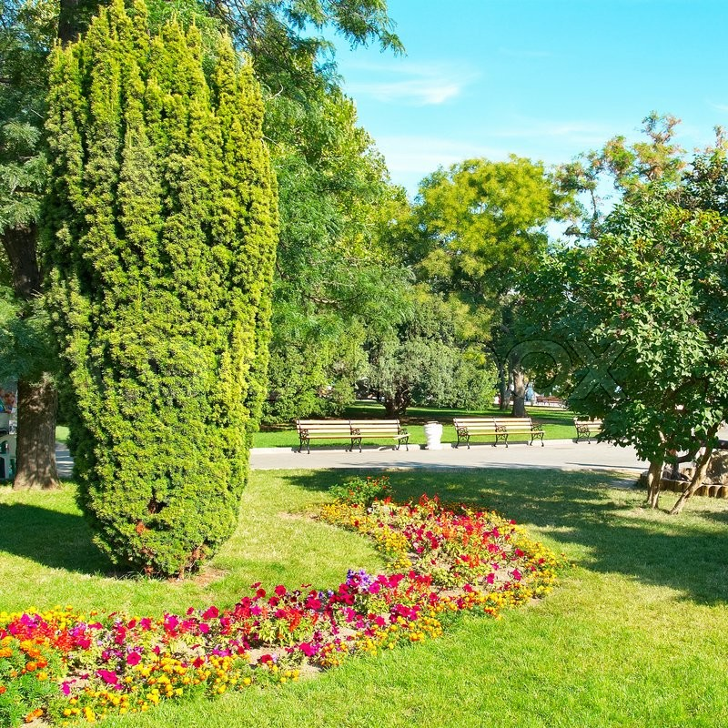 Green sunny garden in city park with flowers and trees   Stock Photo ...