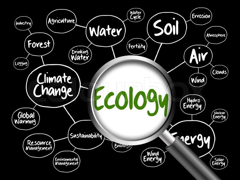 Ecology Mind Map Flowchart Concept With Stock Photo Colourbox