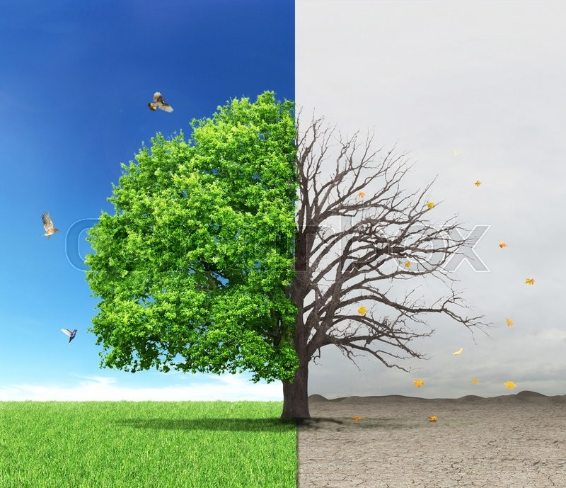 The concept of life and death. Dead and live tree at different backgrounds, stock photo