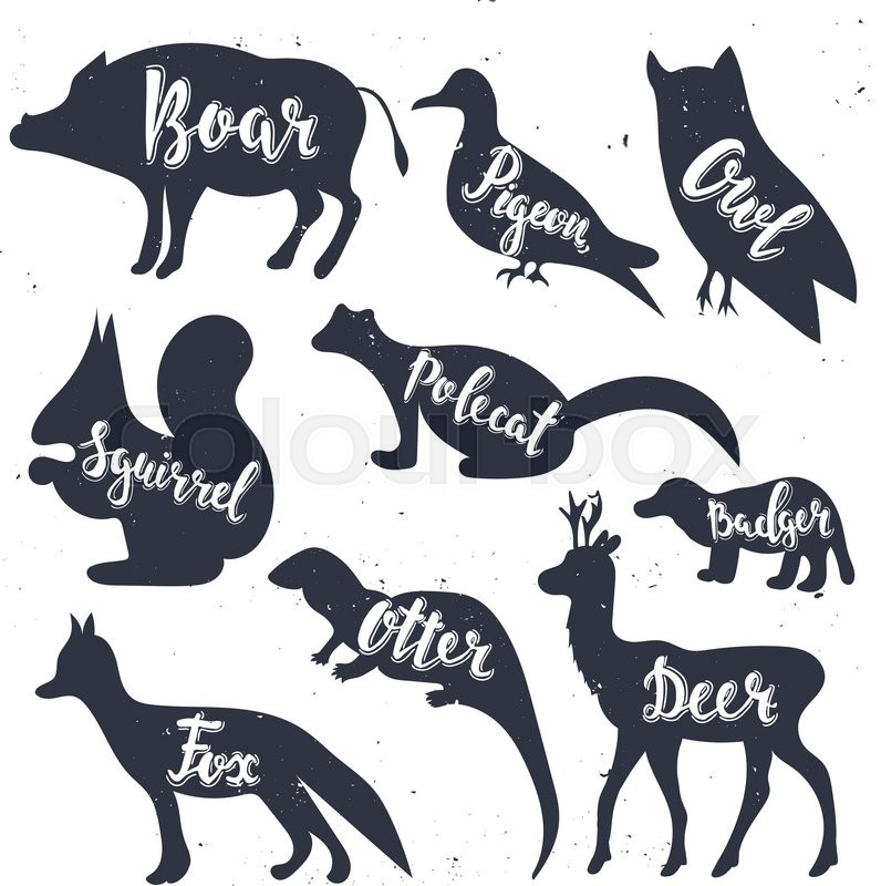 wild animals silhouettes with lettering boar pigeon owl