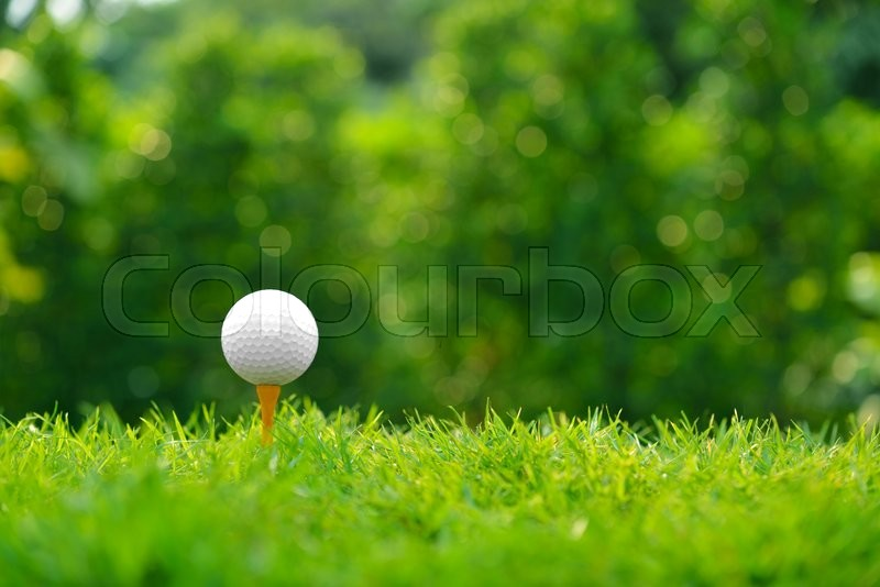 Golf ball on green grass with golf course background, stock photo