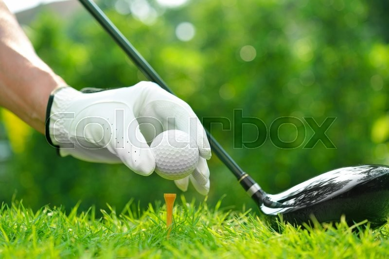 Golfer\'s hand holding golf ball with driver on green grass with golf course background, stock photo