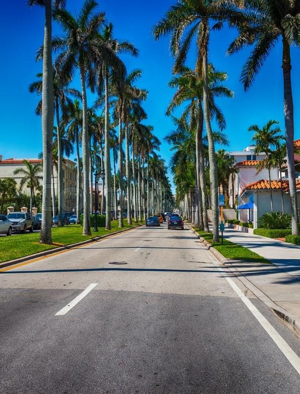 Beautiful Streets Of Palm Beach, Florida.