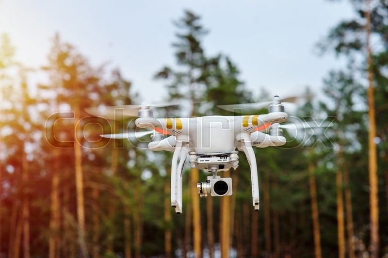 Drone flying on a background of forest trees, stock photo