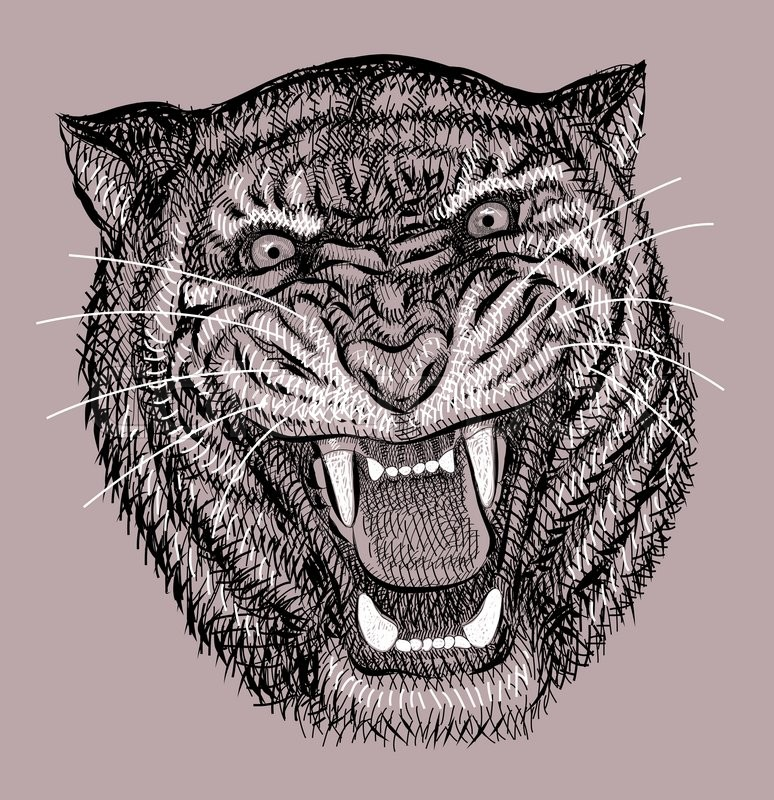 Tiger Head Wild Animal Artistic Lines Stock Vector