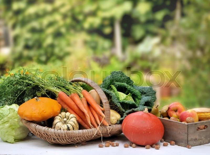 Seasonal vegetables and fruit in a basket on a table on green background, stock photo