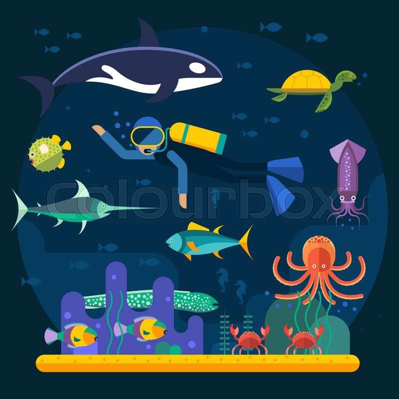Underwater Background With Various Water Plant And Swimming Tropical Fish Diver Coral Garden