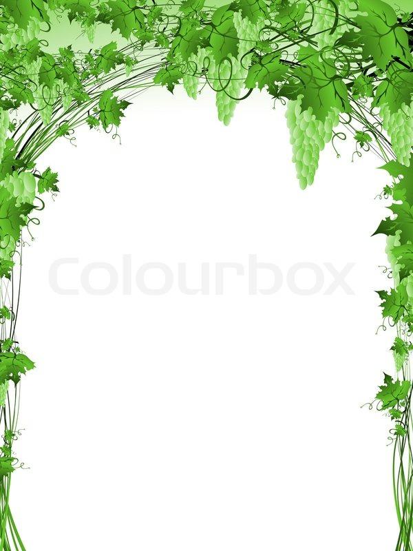Illustration von grünen Weinrebe Rahmen mit copyspace für Ihren Text ...