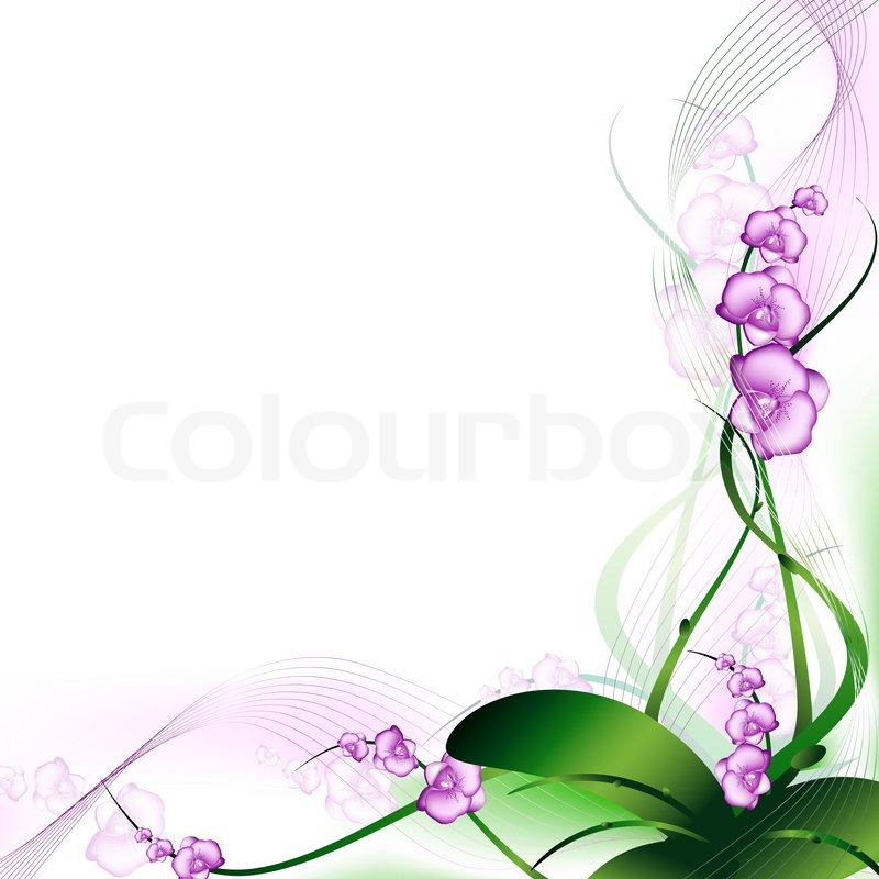 Purple orchid abstract frame with copyspace for your text   Stock ...