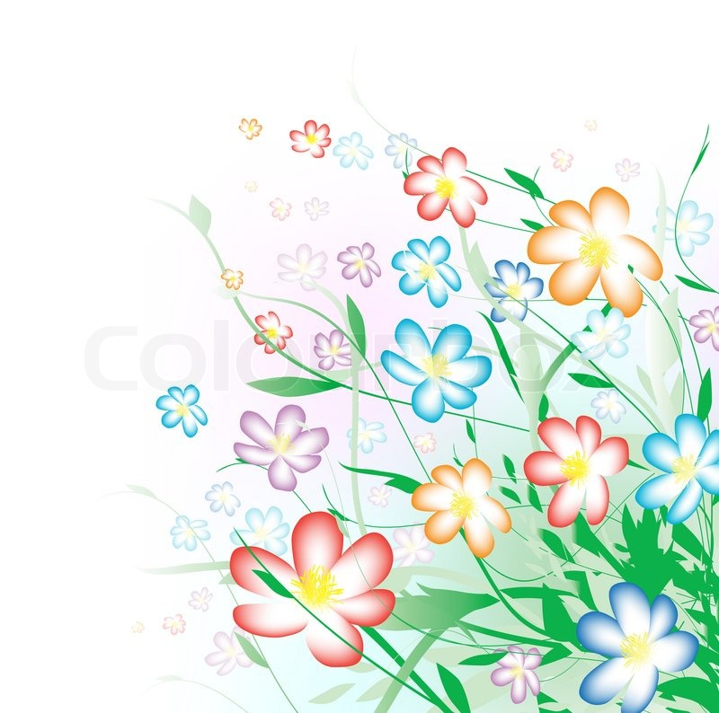 Bright multicolored summer flower bouquet with copyspace for your ...